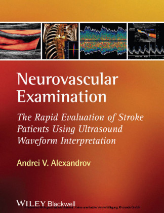 Neurovascular Examination