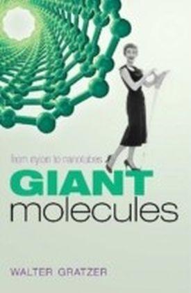 Giant Molecules From nylon to nanotubes