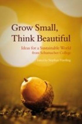 Grow Small, Think Beautiful