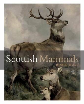 Scottish Mammals