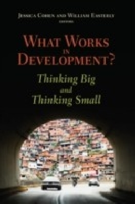 What Works in Development?