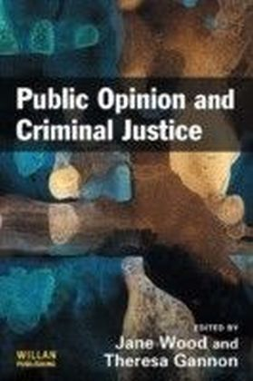 Public Opinion Criminal Justice