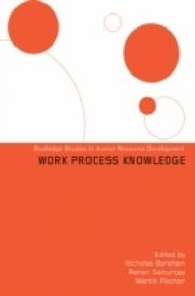 Work Process Knowledge
