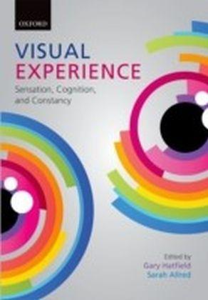 Visual Experience