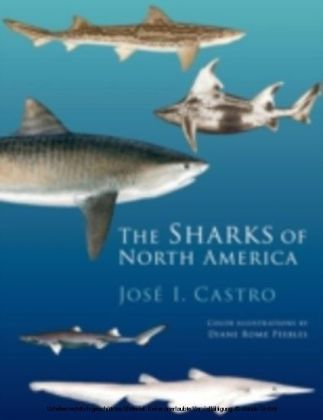 Sharks of North America