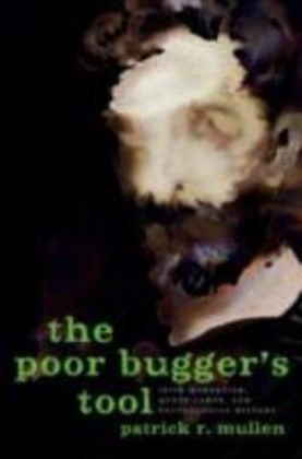 Poor Bugger's Tool:Irish Modernism, Queer Labor, and Postcolonial History
