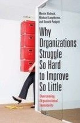Why Organizations Struggle So Hard to Improve So Little