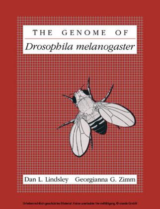 The Genome of Drosophila melanogaster