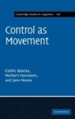 Control as Movement