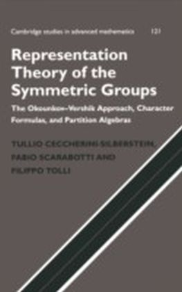 Representation Theory of the Symmetric Groups