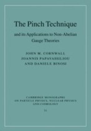 Pinch Technique and its Applications to Non-Abelian Gauge Theories