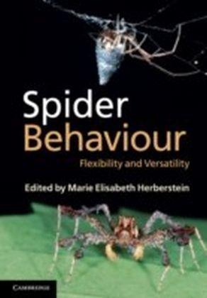 Spider Behaviour