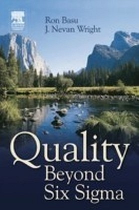 Quality Beyond Six Sigma