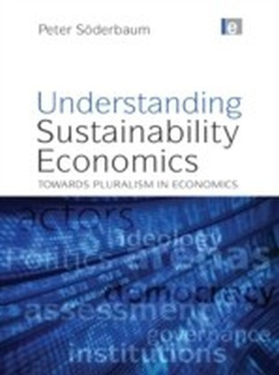 Understanding Sustainability Economics