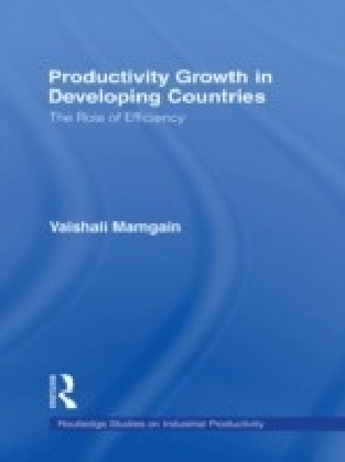 Productivity Growth in Developing Countries