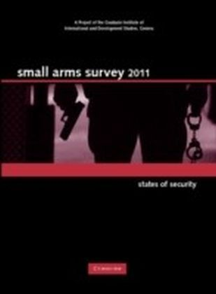 Small Arms Survey 2011