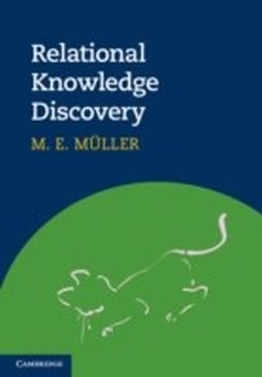 Relational Knowledge Discovery