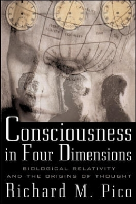 Consciousness In Four Dimensions