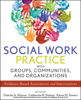 Social Work Practice with Groups, Communities, and Organizations