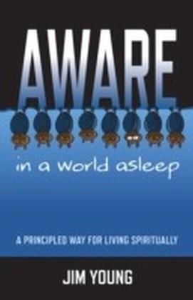 Aware In A World Asleep: A Principled Wa