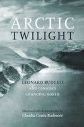 Arctic Twilight