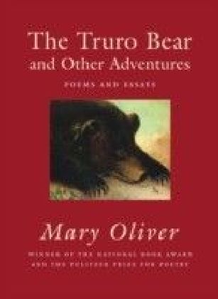 Truro Bear and Other Adventures