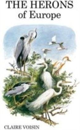Herons of Europe