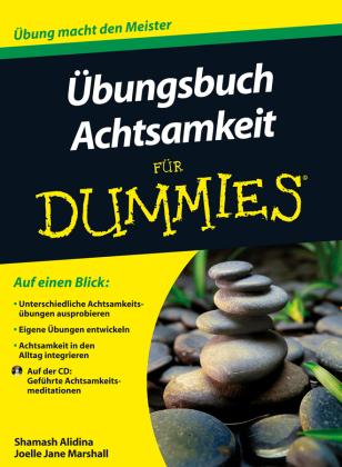 Übungsbuch Achtsamkeit für Dummies, m. Audio-CD