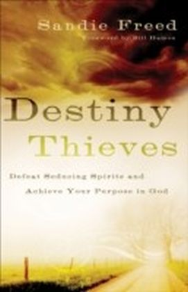 Destiny Thieves