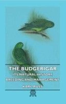 Budgerigar - Its Natural History, Breeding And Management