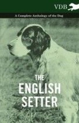 English Setter - A Complete Anthology of the Dog