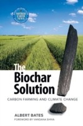 Biochar Solution