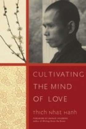 Cultivating the Mind of Love