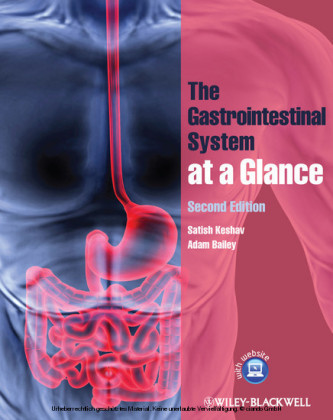 The Gastrointestinal System at a Glance