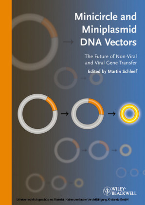 Minicircle and Miniplasmid DNA Vectors