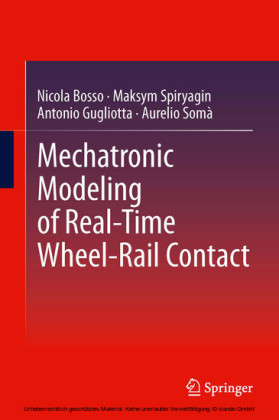 Mechatronic Modeling of Real-Time Wheel-Rail Contact