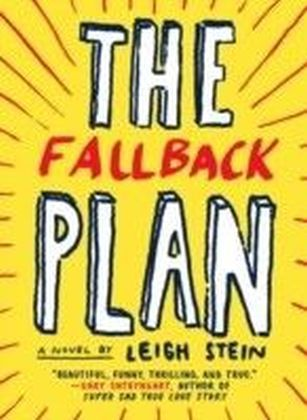 Fallback Plan