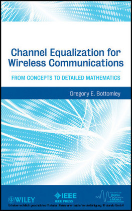 Channel Equalization for Wireless Communications