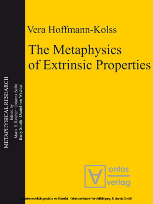 The Metaphysics of Extrinsic Properties