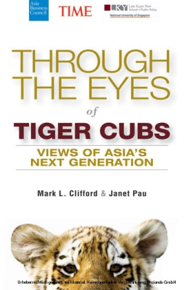 Through the Eyes of Tiger Cubs