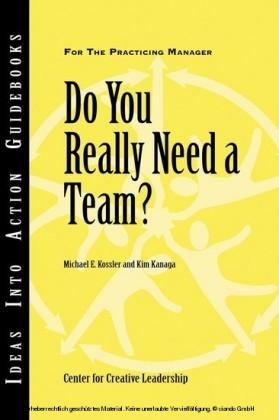 Do You Really Need a Team