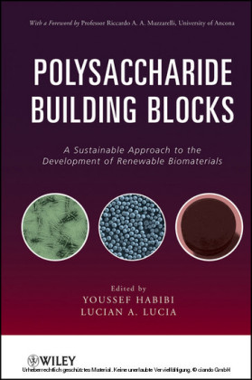 Polysaccharide Building Blocks