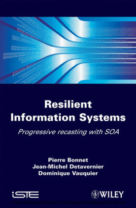 Resilient Information Systems