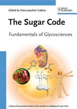 The Sugar Code
