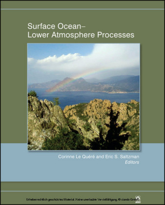 Surface Ocean