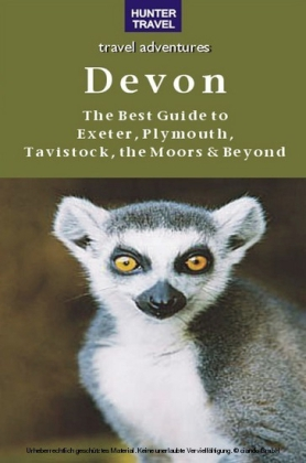 Devon: The Best Guide to Exeter, Plymouth, Tavistock, the Moors & Beyond