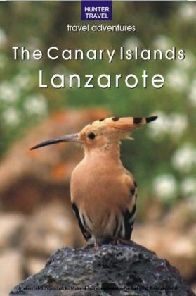 The Canary Islands: Lanzarote