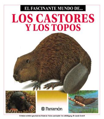Los Castores y los topos