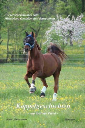 Koppelgeschichten - von und mit Pferd