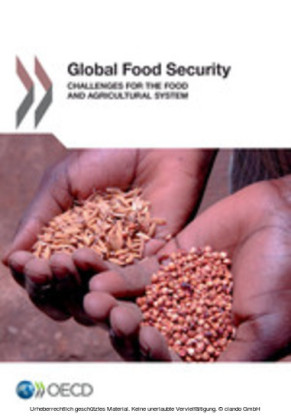 Global Food Security: Challenges for the Food and Agricultural System